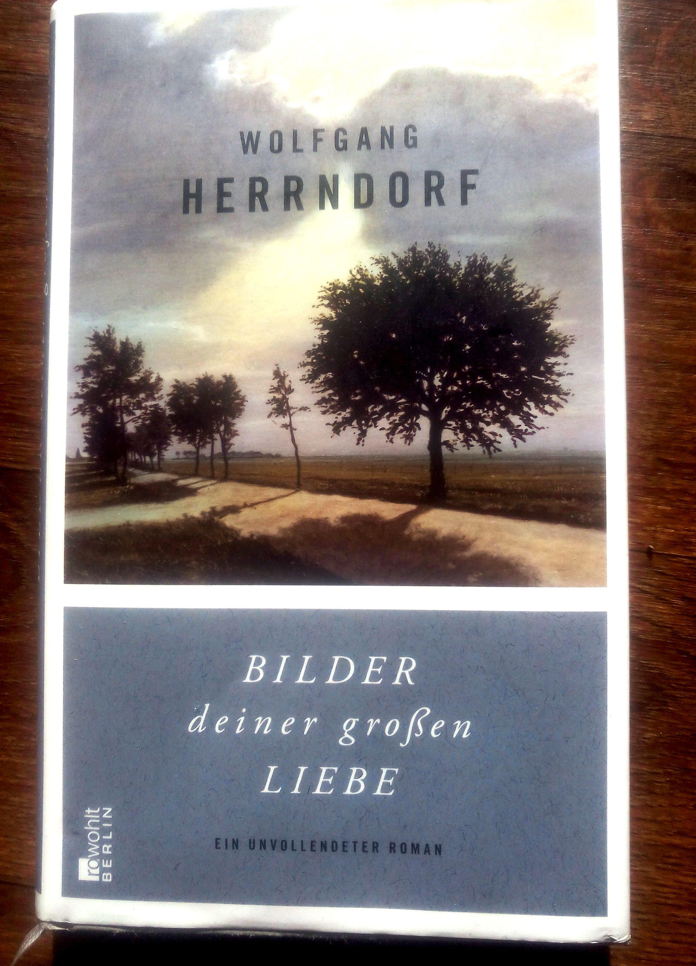 herrndorf_bilder-deiner-grosen-liebe